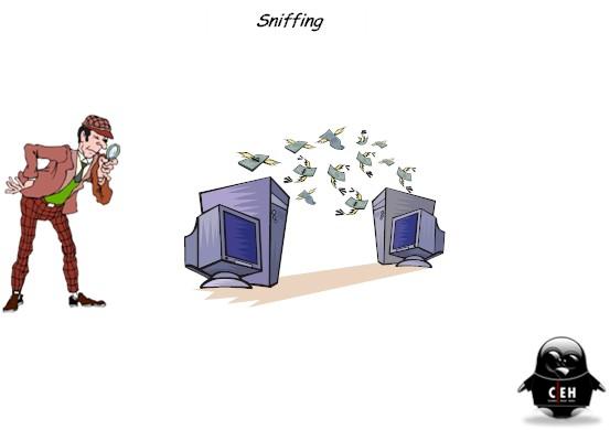 sniffer.jpg
